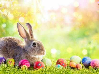 Little Rabbit With Easter Eggs In Flowery Meadow